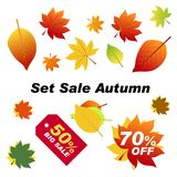 Set sale autumn. Autumn elements for your banners or posters.. Set sale autumn. Autumn elements for your banners or posters. Autumn leaves red, orange, green Stock Photos