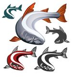 Salmon Fish emblem set. Set of Salmon fish emblem isolated on white background. Vector illustration Royalty Free Stock Photography