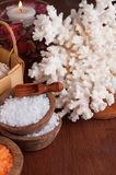 Set of salt for spa Royalty Free Stock Photo