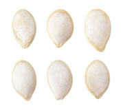 Set of salted pumpkin seeds Stock Photography