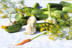 Set for salting of cucumbers Royalty Free Stock Photography