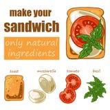 Set with sandwich: toast bread, mozzarella, tomato and basil. Vector illustration Royalty Free Stock Photo