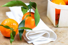 Set of satsuma on wooden table with napkin Stock Image