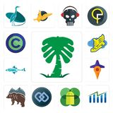 Set of saudi palm, free stock, mobile os a, double d, bear, travel, fishing team, shoe with wings, copyright icons. Set Of 13 simple  icons such as saudi palm Stock Photo