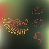 Set Schattenbilder der Vögel Lizenzfreies Stockfoto