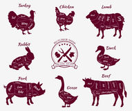 Set Schematic View of Animals for Butcher Shop Royalty Free Stock Photos