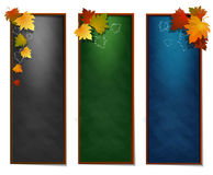 Set of School supplies on blackboard background. Leaves frame. Stock Image