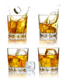 Set of scotch whiskey glasses isolated Stock Images