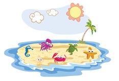 Set of sea animal with beach background Stock Image