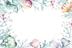 Set of sea animals. Blue watercolor ocean fish, turtle, whale and coral. Shell aquarium background. Nautical marine hand