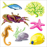 Set of Sea Animals. Image of marine life on a white background vector illustration