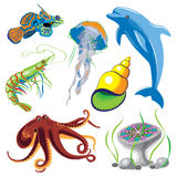 Set of Sea Animals. Vector  illustration Royalty Free Stock Photos