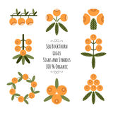 Set of the sea buckthorn logos, signs and symbols for natural cosmetic products Royalty Free Stock Image