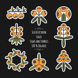 Set of sea buckthorn logos, stickers on black background Royalty Free Stock Images