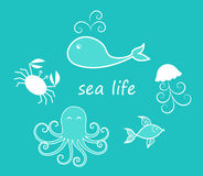A set of sea creatures Stock Photo