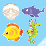 Set of sea creatures. Vector set №1 of sea creatures:  shell, shark, fish, sea horse Royalty Free Stock Images