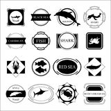 Set of sea. fish silhouette and frame. stock  Royalty Free Stock Photography