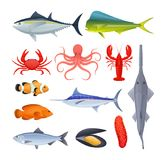 Set of sea river fish. Different kinds of seafood collection. Set of sea and river fish. Different kinds of seafood collection. Fish and shellfish, eating Royalty Free Stock Images