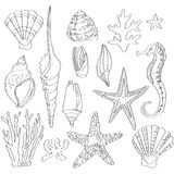 Set of sea shells, hand drawn Royalty Free Stock Photography
