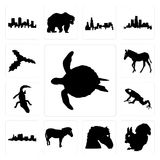 Set of sea turtle outline on white background, a squirrel horse face zebra background icons. Set Of 13 simple editable icons such as sea turtle outline on white Royalty Free Stock Photo