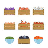 Set of seafood in crates. Set of vector illustration of crate with seafood. Natural, healthy food concept. Fresh sea animals collected in the wooden box. Flat Royalty Free Stock Image