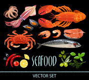 Set of seafood Royalty Free Stock Images