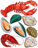 Set of seafood Royalty Free Stock Photography