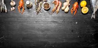 Set seafood. A variety of shrimp, fish, and shellfish. On a black chalkboard Stock Images