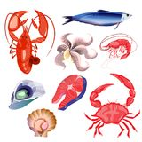 Set of seafood. Vector illustration. Isolated objects on white background. vector illustration