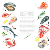 Set of seafood watercolor. Royalty Free Stock Photo