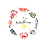 Set of seafood watercolor. Royalty Free Stock Image
