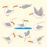 Set of seaguls marine burds Stock Image
