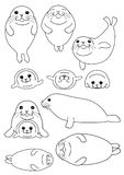 Set of seals parent and child. Set of cute seals parent and child, in various posing vector illustration