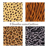 Set of seamless animal patterns. Vector feline or cat background Stock Photo