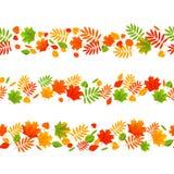 Set of seamless autumn borders. On white Royalty Free Stock Photo