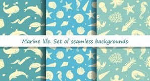 Set of seamless backgrounds with marine animals. Vector set of seamless patterns with images of marine life Stock Image