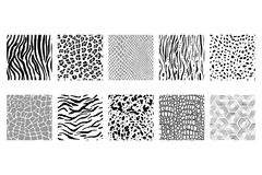 set of seamless black and white animal patterns Stock Images