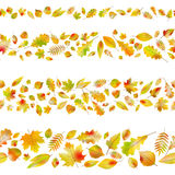 Set of seamless borders from autumn leaves. EPS 10 vector Royalty Free Stock Images