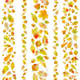 Set of seamless borders from autumn leaves. EPS 10 vector Royalty Free Stock Image