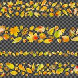 Set of seamless borders from autumn leaves. EPS 10 vector Stock Photos