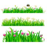 Set of seamless borders with fresh green grass and flowers stock illustration