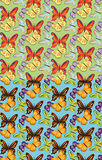 Set of seamless butterflies pattern Royalty Free Stock Photo