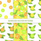 Set of seamless citrus pattern. Vector illustration Royalty Free Stock Image