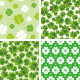 Set of seamless clover patterns Royalty Free Stock Photos
