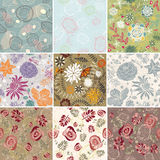 Set of seamless floral background. Vector illustration Royalty Free Stock Photos