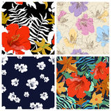 Set of seamless floral backgrounds. Seamless floral pattern with Stock Image