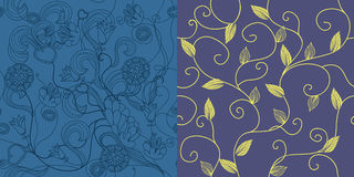 Set of seamless floral pattern Royalty Free Stock Photography