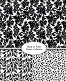 Set of seamless floral pattern. Flowers on a white background. Stock Photography