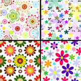 Set Seamless Floral Patterns Royalty Free Stock Photos