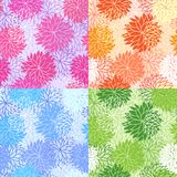 Set of seamless floral patterns. With flowers of chrysanthemum stock illustration